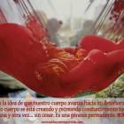 La génesis permanente de nuestro cuerpo