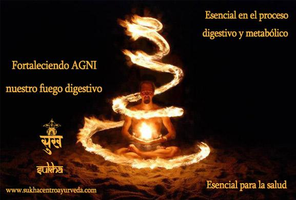 agni_1