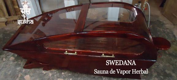 swedana_2