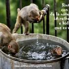 ¡A hidratarse y refrescarse!