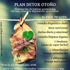 Plan Detox Otoño